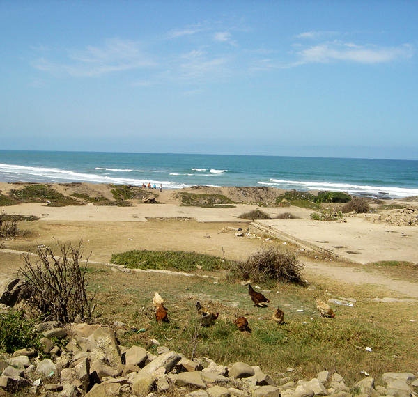 maroc-landscaping9